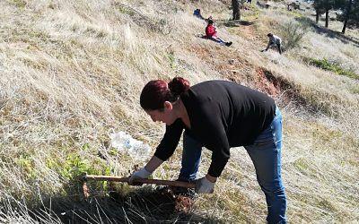 Siembra de encinas y arbustos en el Parque Periurbano. 26 de enero.