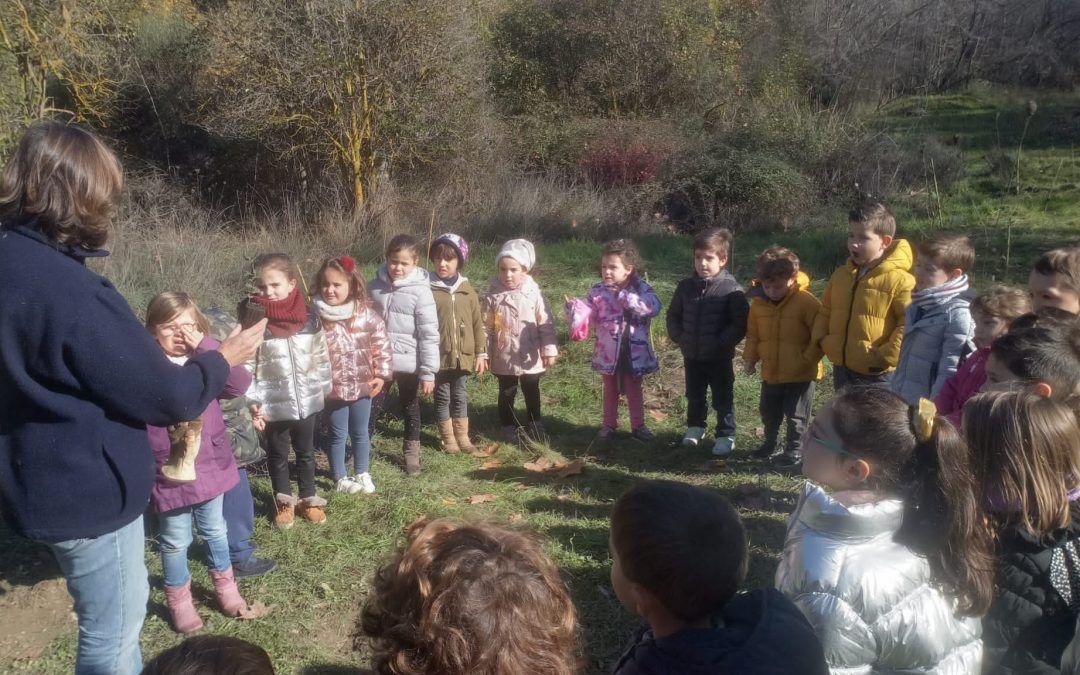 Plantación de encinas y arbustos con los alumnos del colegio Berta Wilhelmi de Pinos Genil